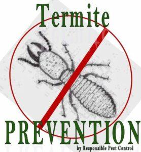 Termite Prevention (2)
