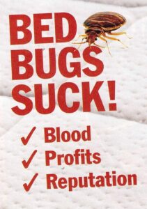 bed bugs suck blood profits reputation