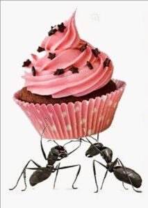 Ants with cupcake from paramount pest control google+ permillsion