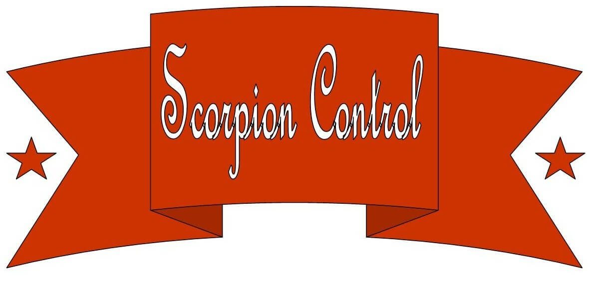 Phoenix Scorpion Control